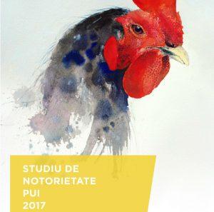 brand-awareness-chicken